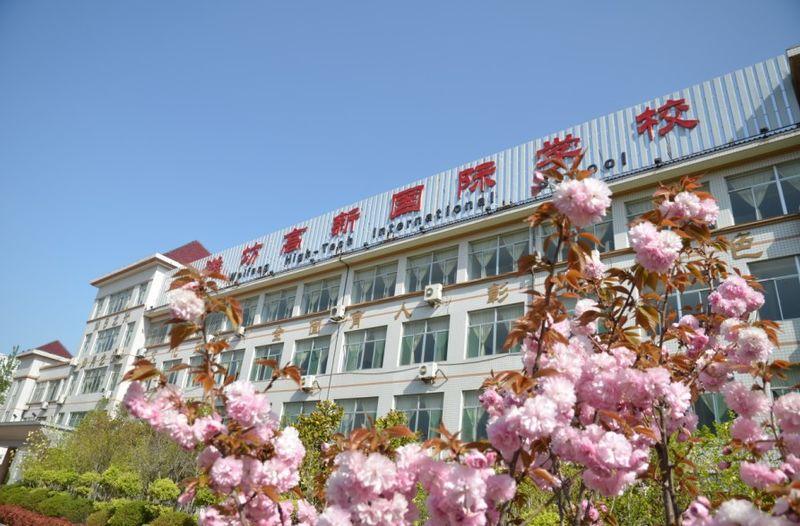 潍坊高新国际学校